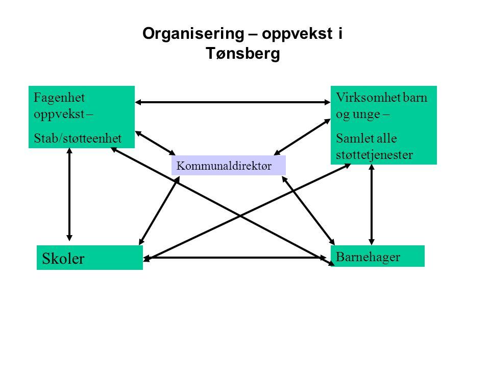 Organisering – oppvekst i Tønsberg Kommunaldirektør Fagenhet oppvekst – Stab/støtteenhet Virksomhet barn og unge – Samlet alle støttetjenester Skoler