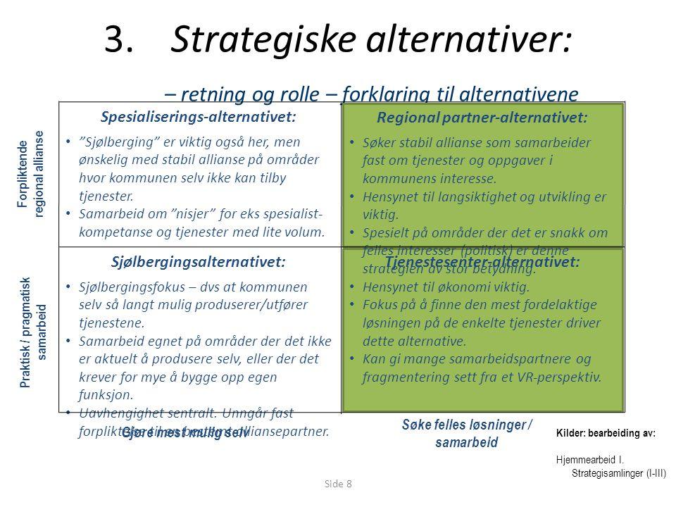 Side 8 3.Strategiske alternativer: – retning og rolle – forklaring til alternativene Sjølbergingsalternativet: Sjølbergingsfokus – dvs at kommunen selv så langt mulig produserer/utfører tjenestene.
