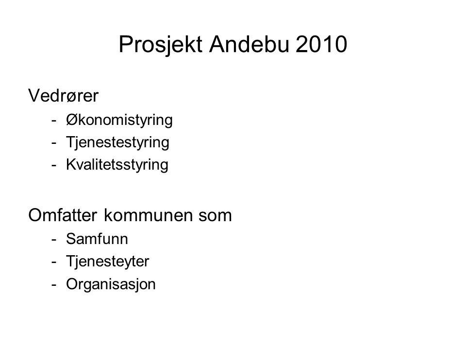 Prosjekt Andebu 2010 Vedrører -Økonomistyring -Tjenestestyring -Kvalitetsstyring Omfatter kommunen som -Samfunn -Tjenesteyter -Organisasjon