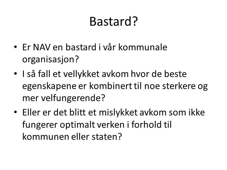 Bastard? Er NAV en bastard i vår kommunale organisasjon? I så fall et vellykket avkom hvor de beste egenskapene er kombinert til noe sterkere og mer v