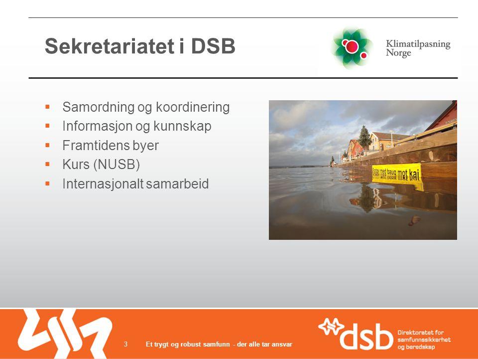 Sekretariatet i DSB  Samordning og koordinering  Informasjon og kunnskap  Framtidens byer  Kurs (NUSB)  Internasjonalt samarbeid Et trygt og robust samfunn - der alle tar ansvar3