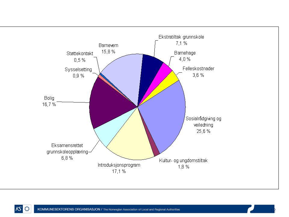 12 Mesteparten av utgiftene til sosial råd- og veiledning