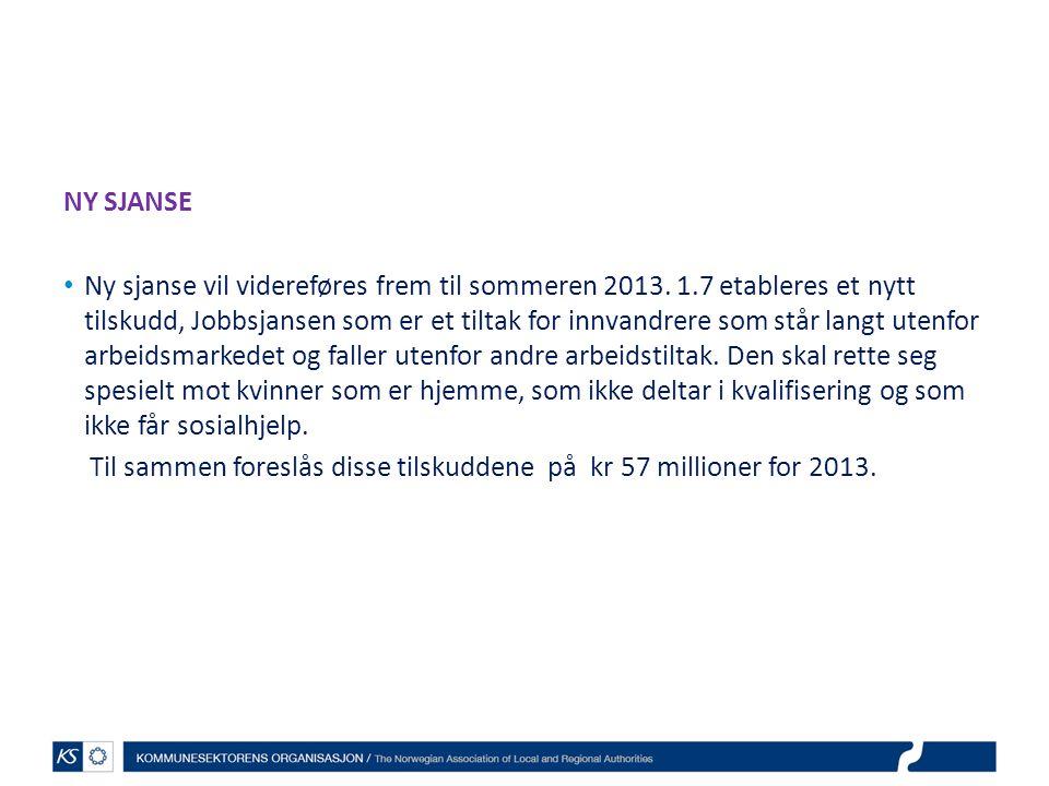 NY SJANSE Ny sjanse vil videreføres frem til sommeren 2013. 1.7 etableres et nytt tilskudd, Jobbsjansen som er et tiltak for innvandrere som står lang