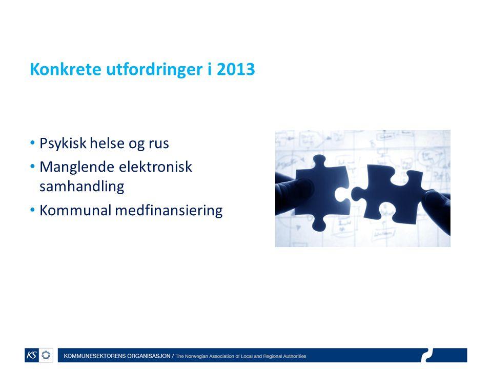 Konkrete utfordringer i 2013 Psykisk helse og rus Manglende elektronisk samhandling Kommunal medfinansiering