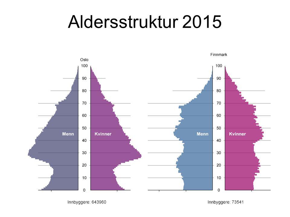 Aldersstruktur 2015