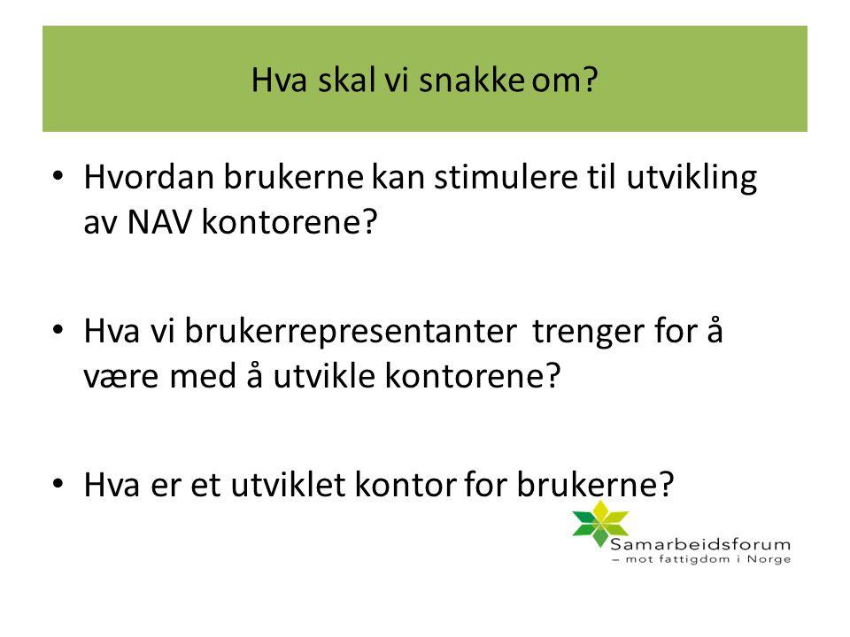 Hva skal vi snakke om? Hvordan brukerne kan stimulere til utvikling av NAV kontorene? Hva vi brukerrepresentanter trenger for å være med å utvikle kon