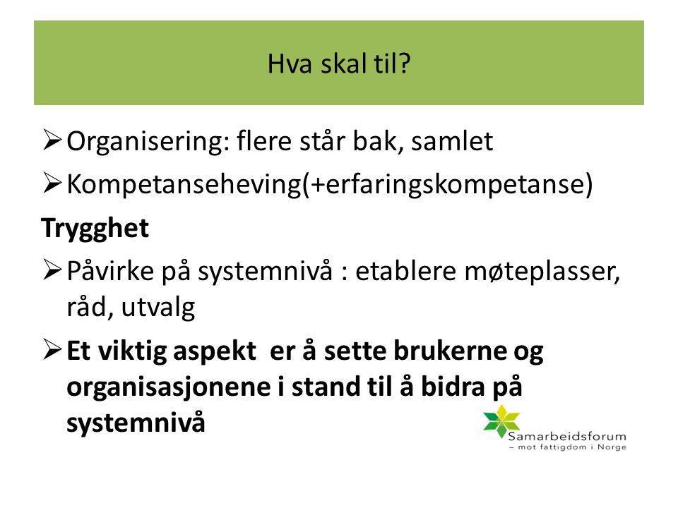 Hva skal til?  Organisering: flere står bak, samlet  Kompetanseheving(+erfaringskompetanse) Trygghet  Påvirke på systemnivå : etablere møteplasser,