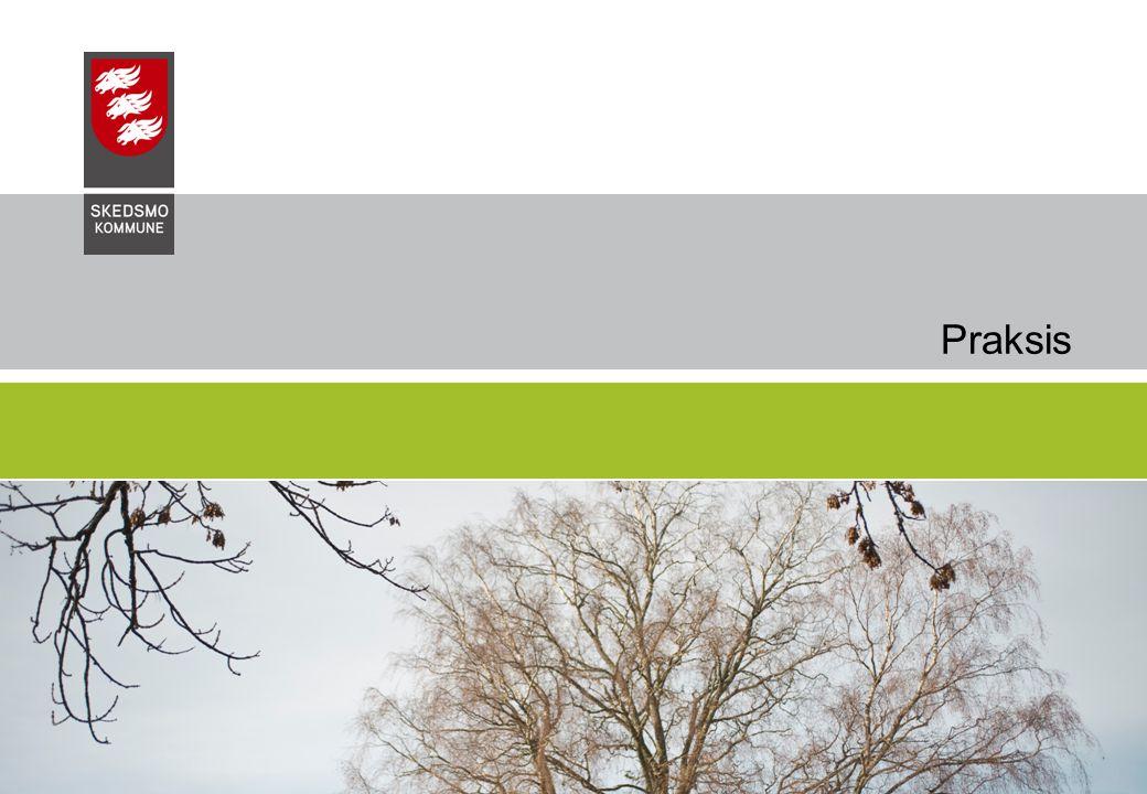 09.07.2014Skedsmo Kommune, Undervisningssektoren4 Praksis