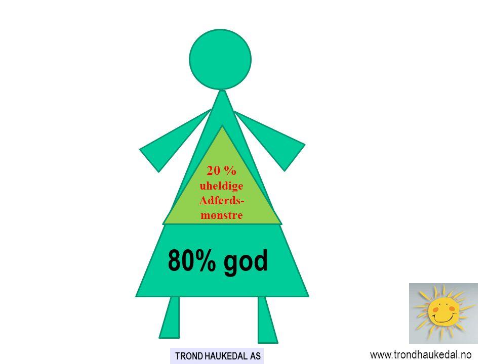 80% 20 % uheldige Adferds- mønstre 80% god www.trondhaukedal.no TROND HAUKEDAL AS