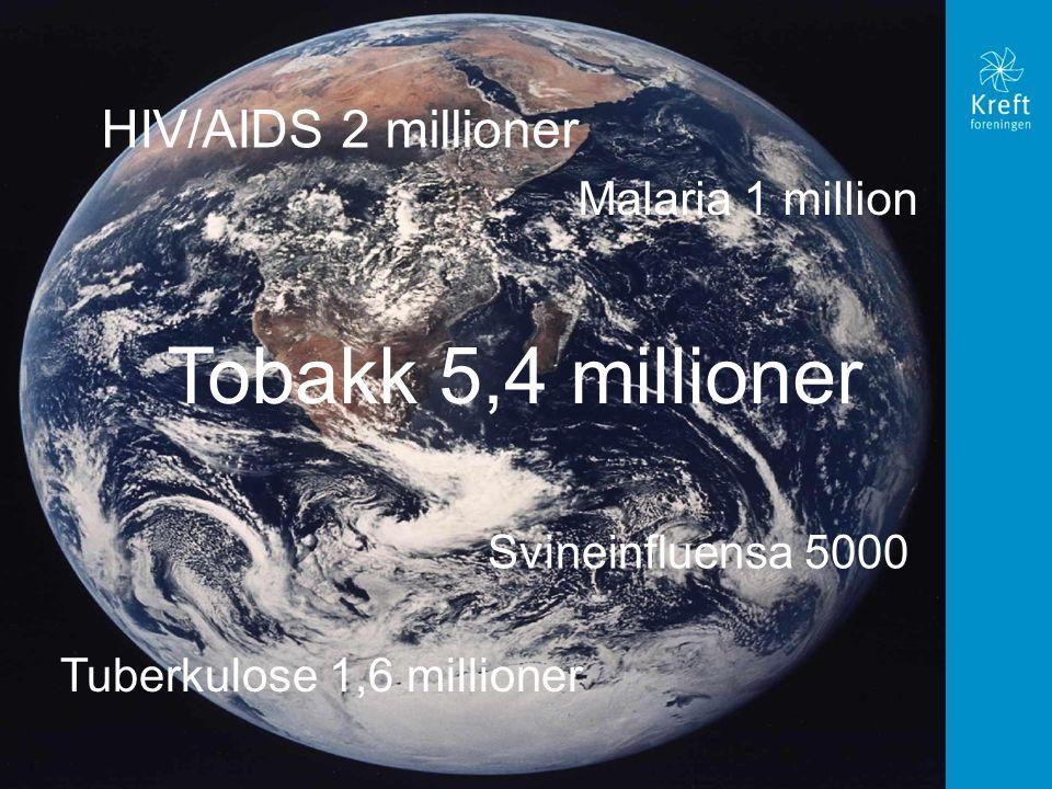 HIV/AIDS 2 millioner Malaria 1 million Tobakk 5,4 millioner Tuberkulose 1,6 millioner Svineinfluensa 5000
