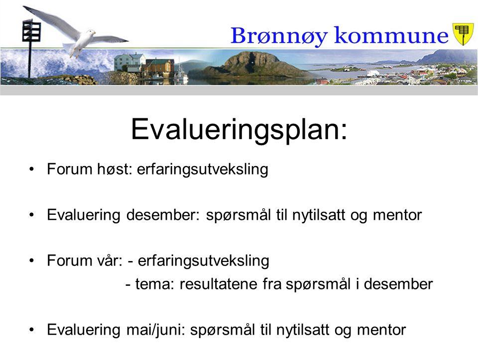 Evalueringsplan: Forum høst: erfaringsutveksling Evaluering desember: spørsmål til nytilsatt og mentor Forum vår: - erfaringsutveksling - tema: result