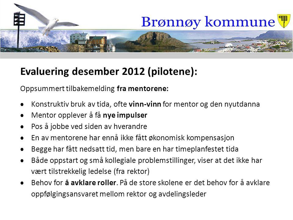 Evaluering desember 2012 (pilotene): Oppsummert tilbakemelding fra mentorene:  Konstruktiv bruk av tida, ofte vinn-vinn for mentor og den nyutdanna 