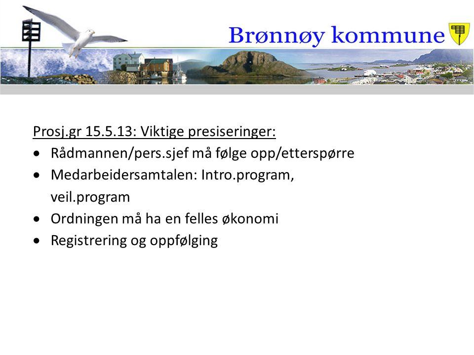 Prosj.gr 15.5.13: Viktige presiseringer:  Rådmannen/pers.sjef må følge opp/etterspørre  Medarbeidersamtalen: Intro.program, veil.program  Ordningen