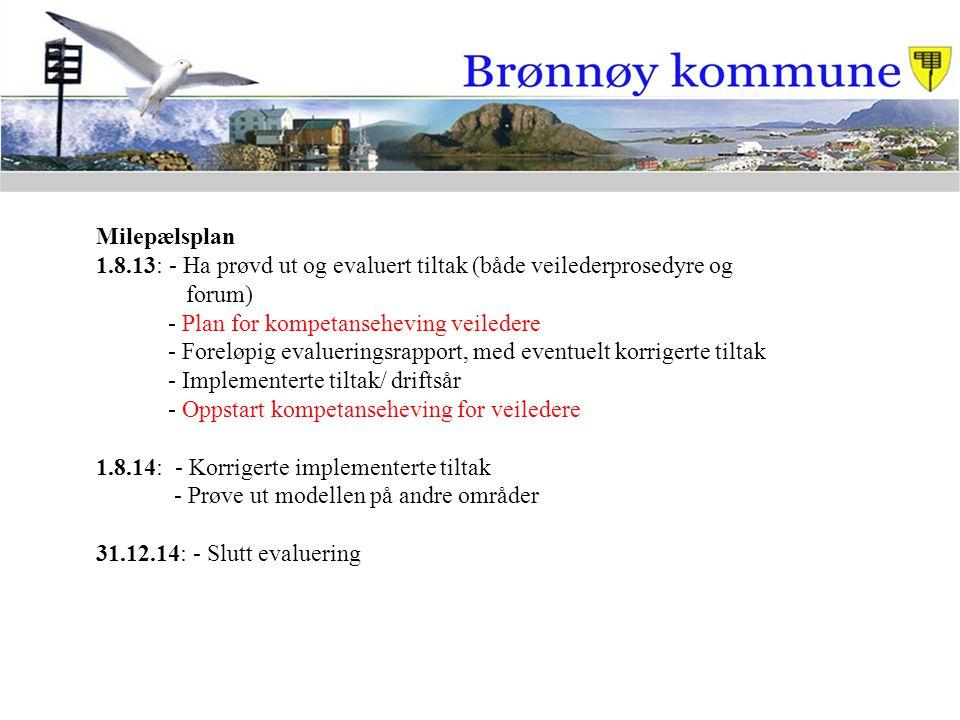 Milepælsplan 1.8.13: - Ha prøvd ut og evaluert tiltak (både veilederprosedyre og forum) - Plan for kompetanseheving veiledere - Foreløpig evalueringsr