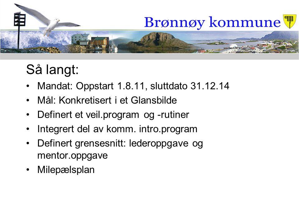 Så langt: Mandat: Oppstart 1.8.11, sluttdato 31.12.14 Mål: Konkretisert i et Glansbilde Definert et veil.program og -rutiner Integrert del av komm. in