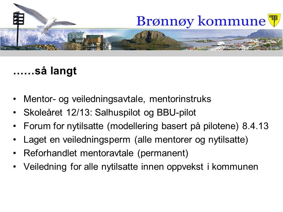 ……så langt Mentor- og veiledningsavtale, mentorinstruks Skoleåret 12/13: Salhuspilot og BBU-pilot Forum for nytilsatte (modellering basert på pilotene