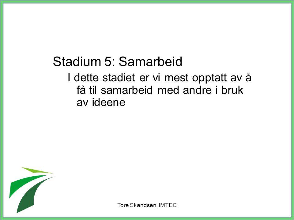 Tore Skandsen, IMTEC Stadium 5: Samarbeid I dette stadiet er vi mest opptatt av å få til samarbeid med andre i bruk av ideene