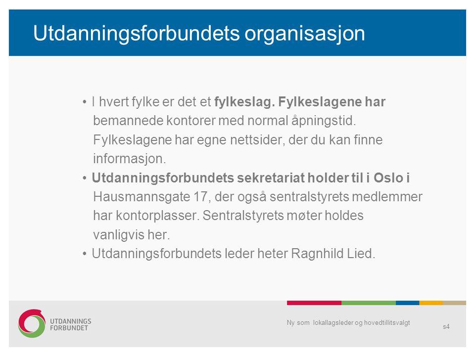 Årsmøtet Lokallagsleder har et spesielt ansvar for lokallagets årsmøte og ev.