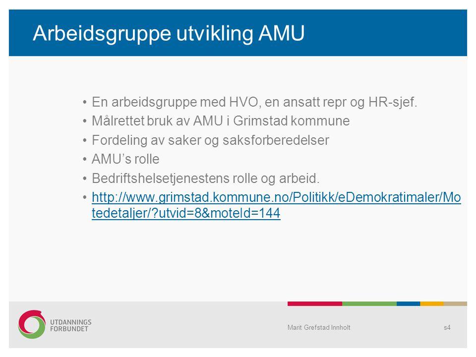 Arbeidsgruppe utvikling AMU En arbeidsgruppe med HVO, en ansatt repr og HR-sjef. Målrettet bruk av AMU i Grimstad kommune Fordeling av saker og saksfo