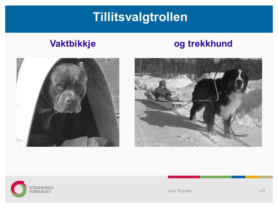 s10 Tillitsvalgtrollen Vaktbikkjeog trekkhund