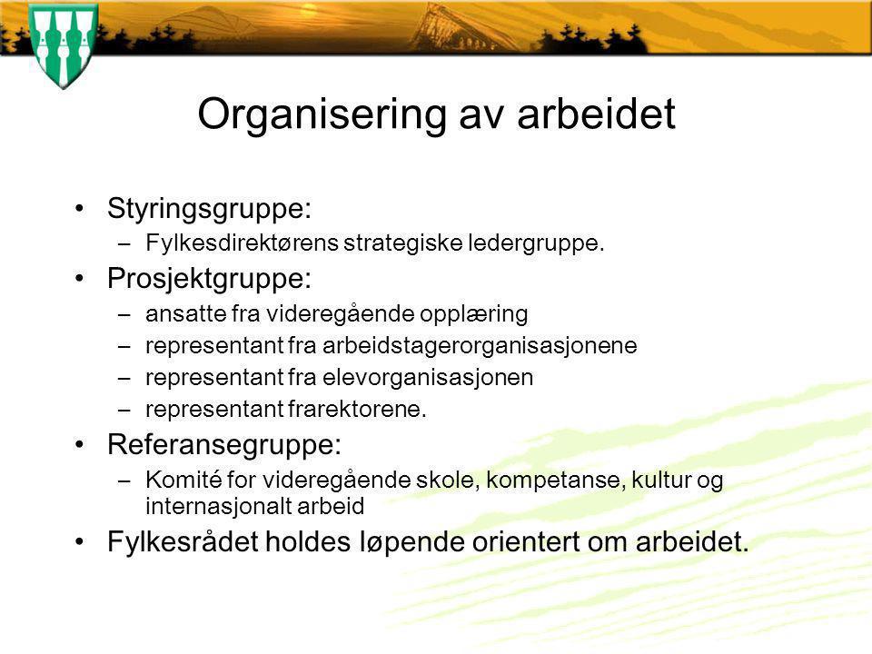 Organisering av arbeidet Styringsgruppe: –Fylkesdirektørens strategiske ledergruppe.