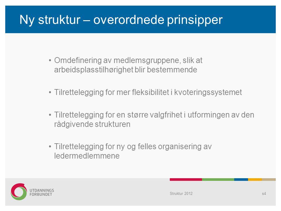 Ny struktur – overordnede prinsipper Omdefinering av medlemsgruppene, slik at arbeidsplasstilhørighet blir bestemmende Tilrettelegging for mer fleksib