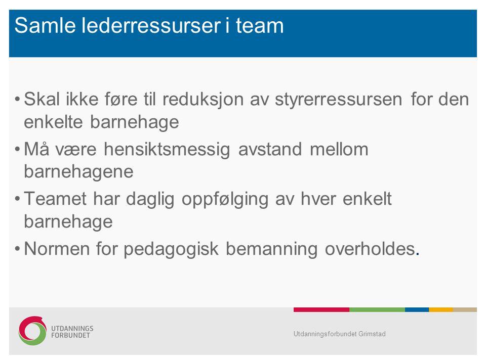 Samle lederressurser i team Skal ikke føre til reduksjon av styrerressursen for den enkelte barnehage Må være hensiktsmessig avstand mellom barnehagen