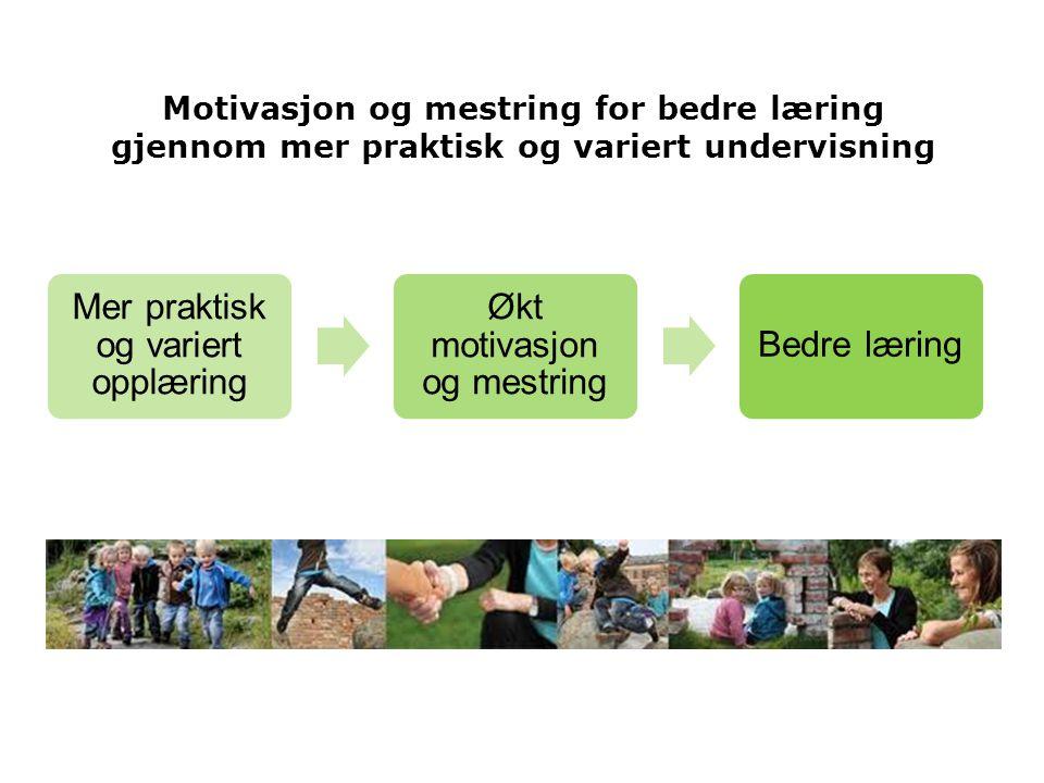 Motivasjon og mestring for bedre læring gjennom mer praktisk og variert undervisning Mer praktisk og variert opplæring Økt motivasjon og mestring Bedr