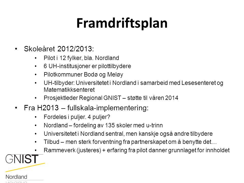 Framdriftsplan Skoleåret 2012/2013: Pilot i 12 fylker, bla. Nordland 6 UH-institusjoner er pilottilbydere Pilotkommuner Bodø og Meløy UH-tilbyder: Uni