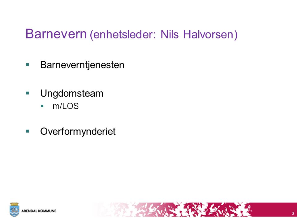 Barnevern (enhetsleder: Nils Halvorsen)  Barneverntjenesten  Ungdomsteam  m/LOS  Overformynderiet 3
