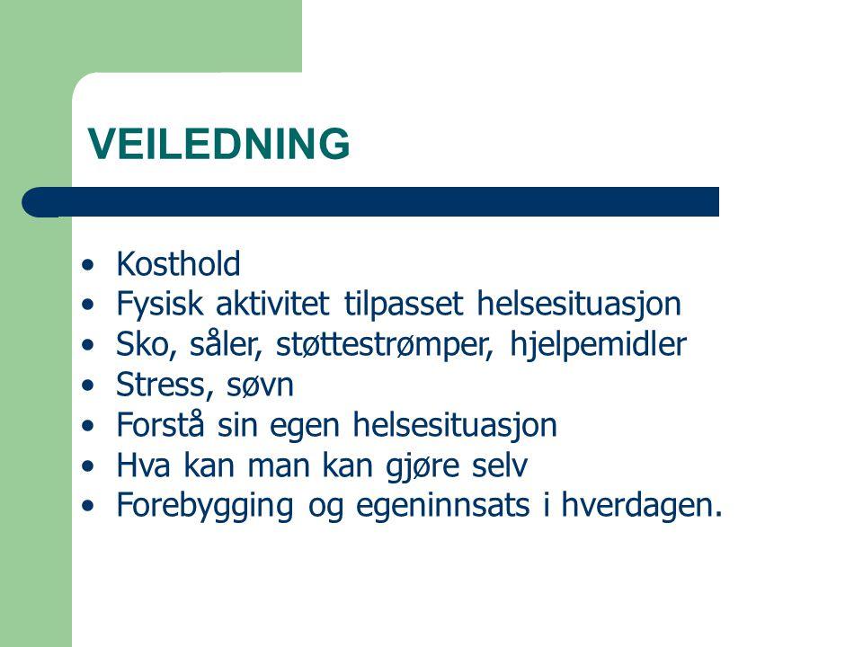 VEILEDNING Kosthold Fysisk aktivitet tilpasset helsesituasjon Sko, såler, støttestrømper, hjelpemidler Stress, søvn Forstå sin egen helsesituasjon Hva