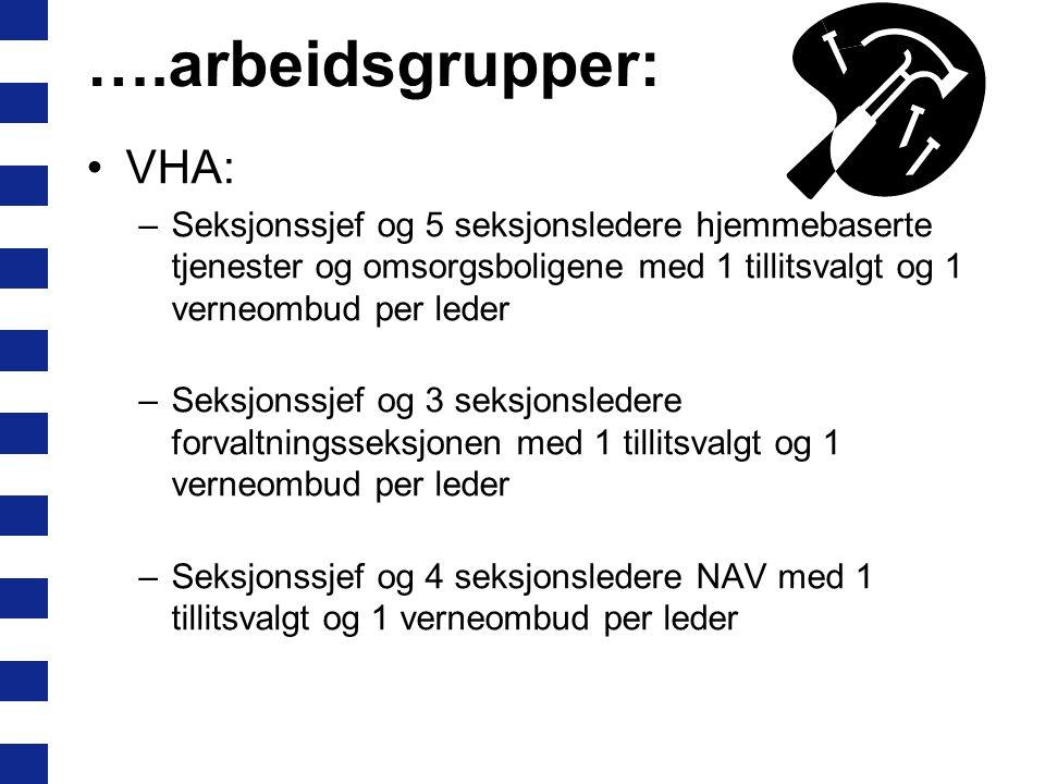 Arbeidsgrupper framover: Bydelsdirektørens team m/HVO og HTV ONA/ADA: –Barnehageseksjonen med seksjonssjef og 5 seksjonsledere og 1 verneombud og 1 ti
