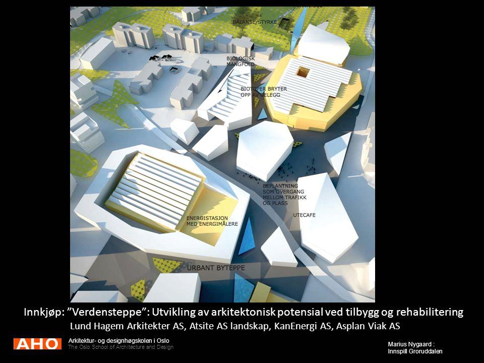 "Arkitektur- og designhøgskolen i Oslo The Oslo School of Architecture and Design Marius Nygaard : Innspill Groruddalen Innkjøp: ""Verdensteppe"": Utvikl"