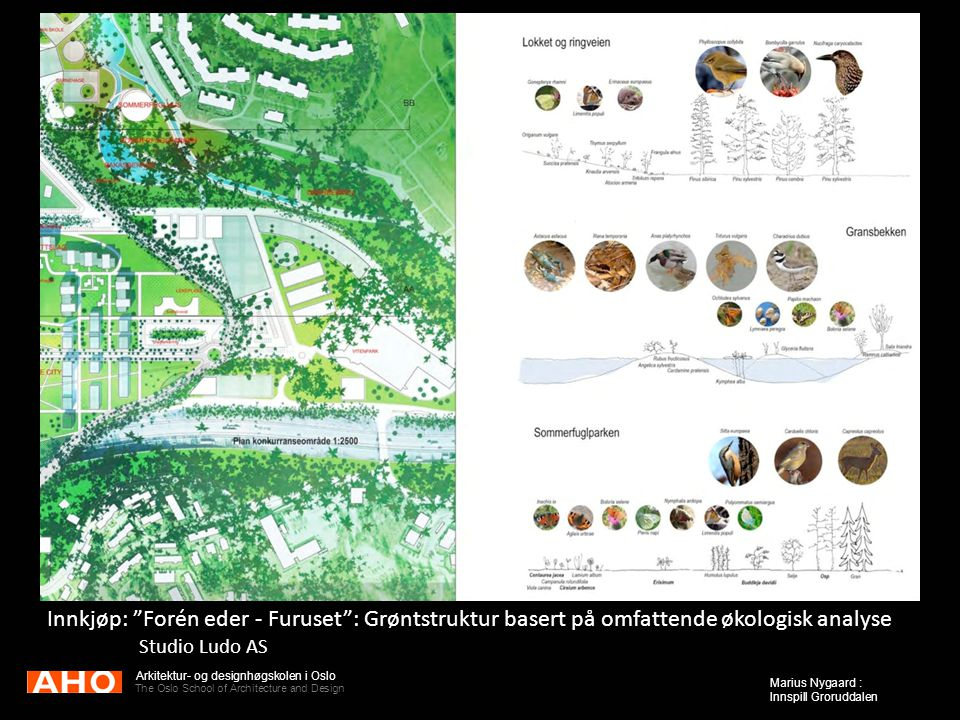 "Arkitektur- og designhøgskolen i Oslo The Oslo School of Architecture and Design Marius Nygaard : Innspill Groruddalen Innkjøp: ""Forén eder - Furuset"""