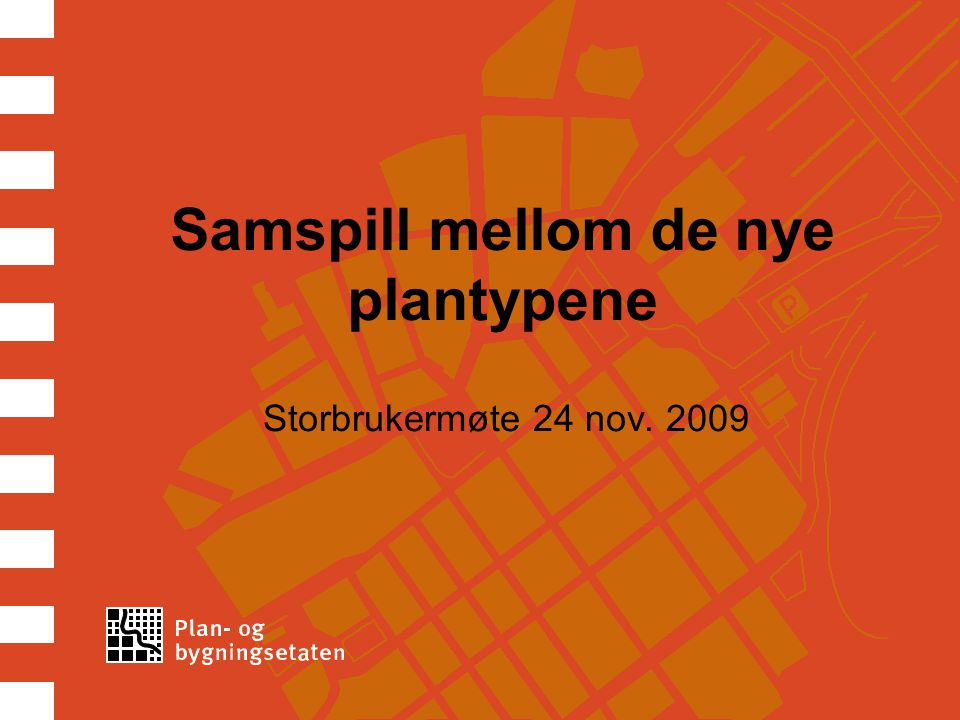 Samspill mellom de nye plantypene Storbrukermøte 24 nov. 2009