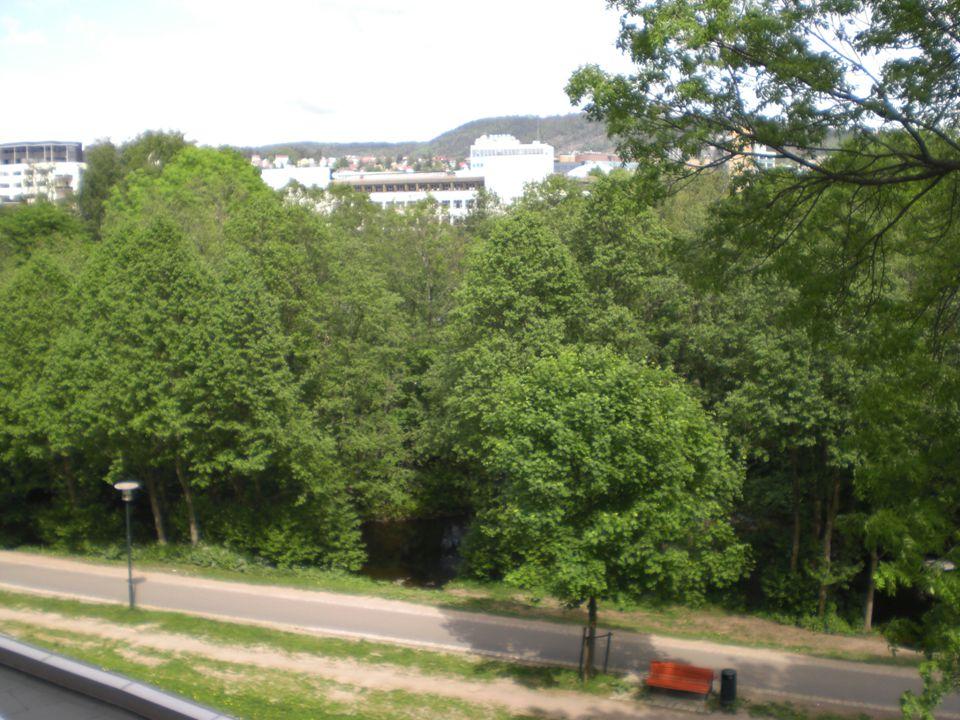 Utsikt mot byen.