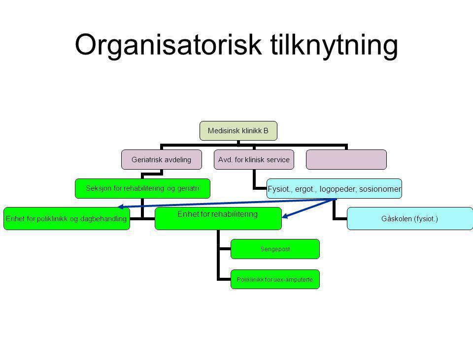 Organisatorisk tilknytning