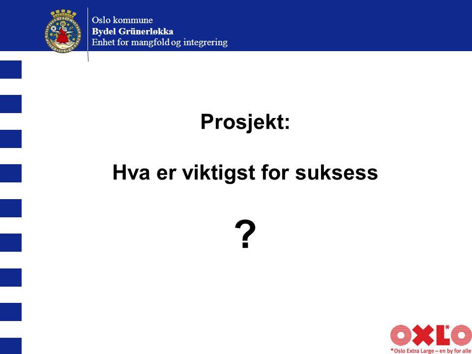 Oslo kommune Bydel Grünerløkka Enhet for mangfold og integrering Prosjekt: Hva er viktigst for suksess ?