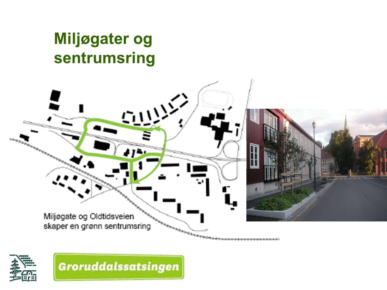 Miljøgater og sentrumsring