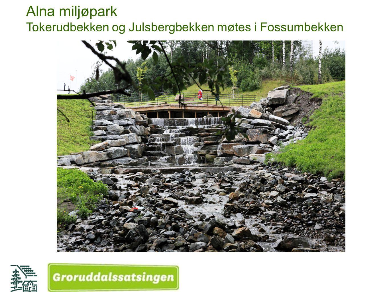 Alna miljøpark Tokerudbekken og Julsbergbekken møtes i Fossumbekken