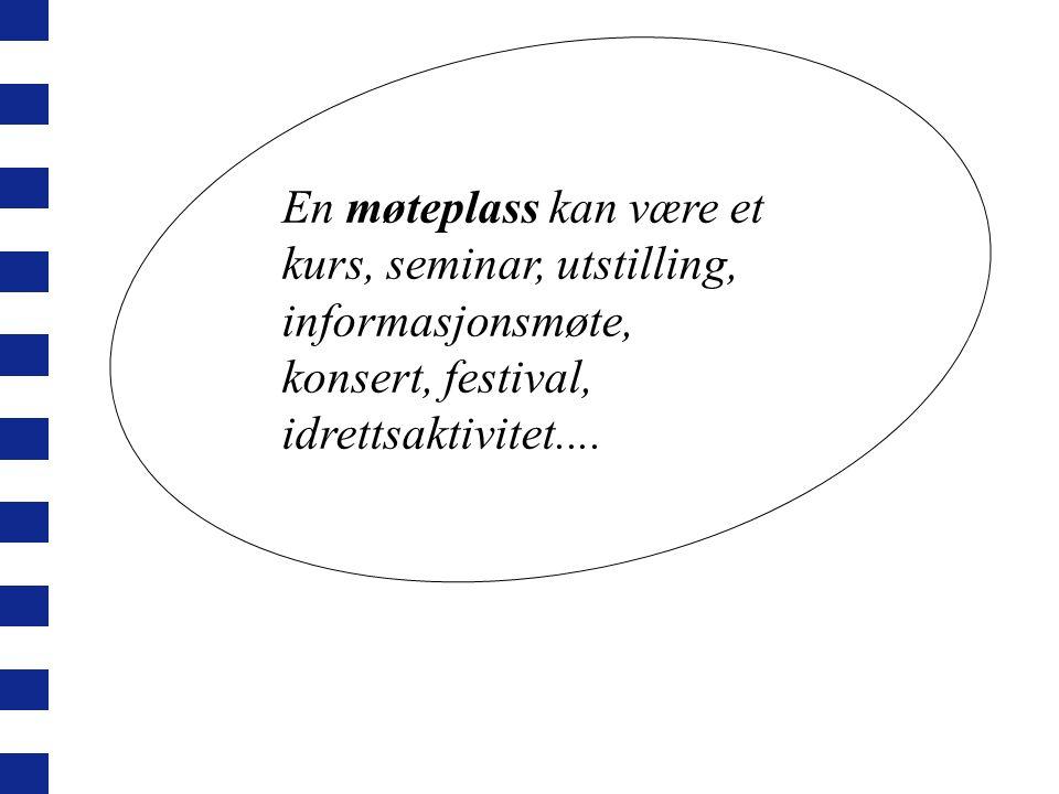 Det gis ikke tilskudd til: Norskundervisning, morsmålsundervisning Leksehjelp Drift og investeringer Kommersielle tiltak Reiser og oppholdsutgifter prioriteres i hovedsak ikke