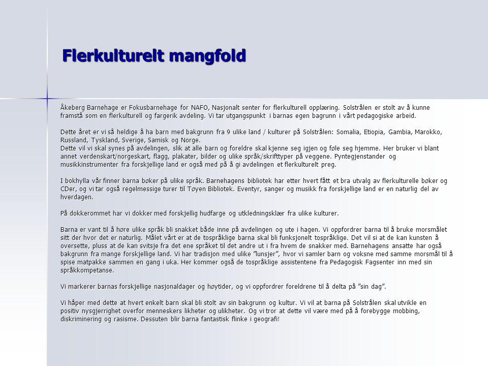 Flerkulturelt mangfold Åkeberg Barnehage er Fokusbarnehage for NAFO, Nasjonalt senter for flerkulturell opplæring. Solstrålen er stolt av å kunne fram