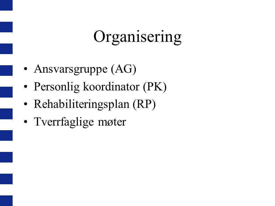 Ansvarsgruppe (AG) En tett samarbeidende gruppe som er tverrfaglig sammensatt Består av ergoterapeut, fysioterapeut, sykepleier og/eller hjelpepleier Personlig koordinator (PK) tar ansvar for det første møtet i AG, deretter tilstrebes hyppig og uformell kontakt i AG AG overtar ansvaret til PK ved fravær AG møter forberedt til tverrfaglige møter