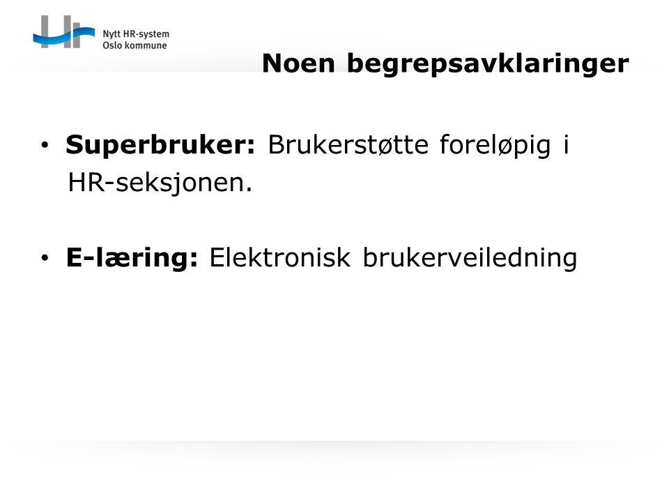 Superbruker: Brukerstøtte foreløpig i HR-seksjonen. E-læring: Elektronisk brukerveiledning