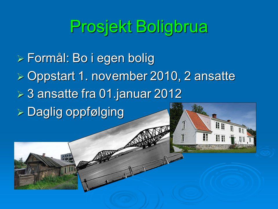 Prosjekt Boligbrua  Formål: Bo i egen bolig  Oppstart 1. november 2010, 2 ansatte  3 ansatte fra 01.januar 2012  Daglig oppfølging