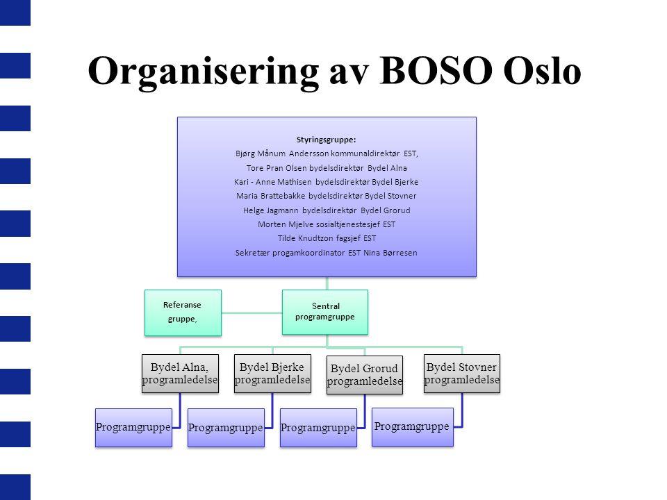 Organisering av BOSO Oslo Styringsgruppe: Bjørg Månum Andersson kommunaldirektør EST, Tore Pran Olsen bydelsdirektør Bydel Alna Kari - Anne Mathisen b