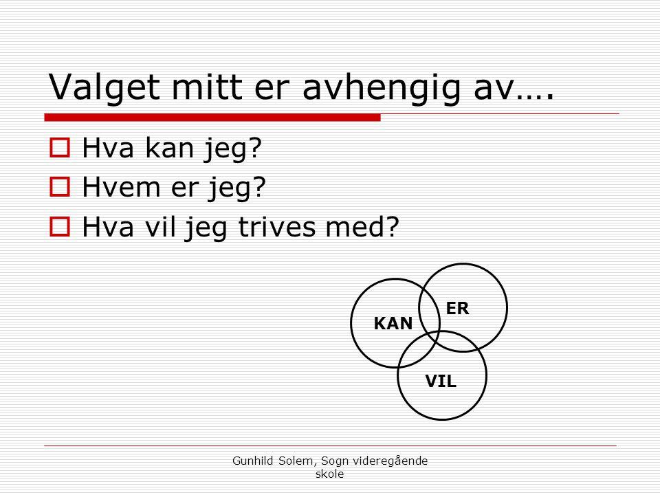 Gunhild Solem, Sogn videregående skole Valget mitt er avhengig av….