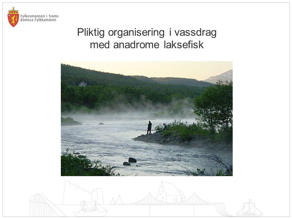 Pliktig organisering i vassdrag med anadrome laksefisk