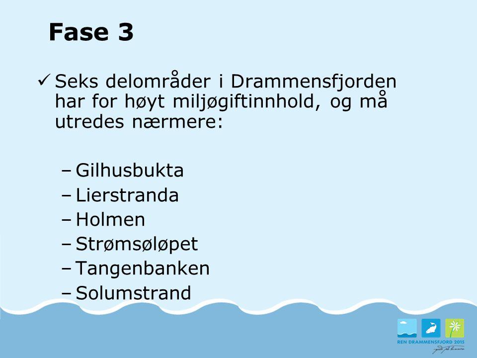Seks delområder i Drammensfjorden har for høyt miljøgiftinnhold, og må utredes nærmere: –Gilhusbukta –Lierstranda –Holmen –Strømsøløpet –Tangenbanken