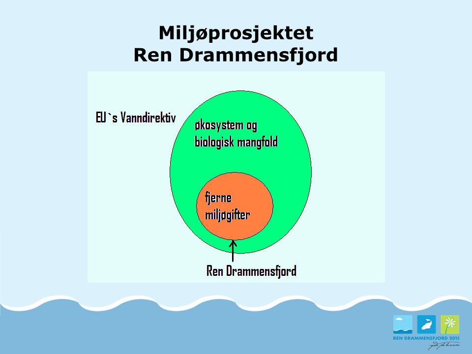 Kilder til forurensning i fjorden Røde piler viser kilder som er vurdert i fase 2